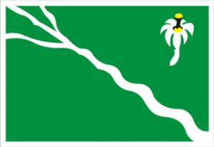 belo-jardim-pernambuco-bandeira