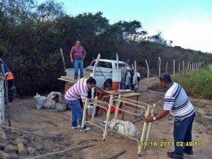Incra demole casas de moradores despejados da Fazenda Ouro