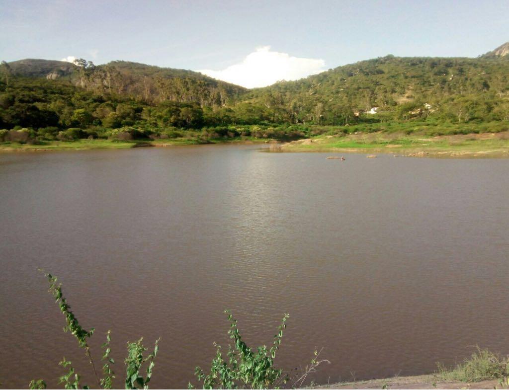 Chuvas melhoram níveis de barragens no Agreste e Sertão