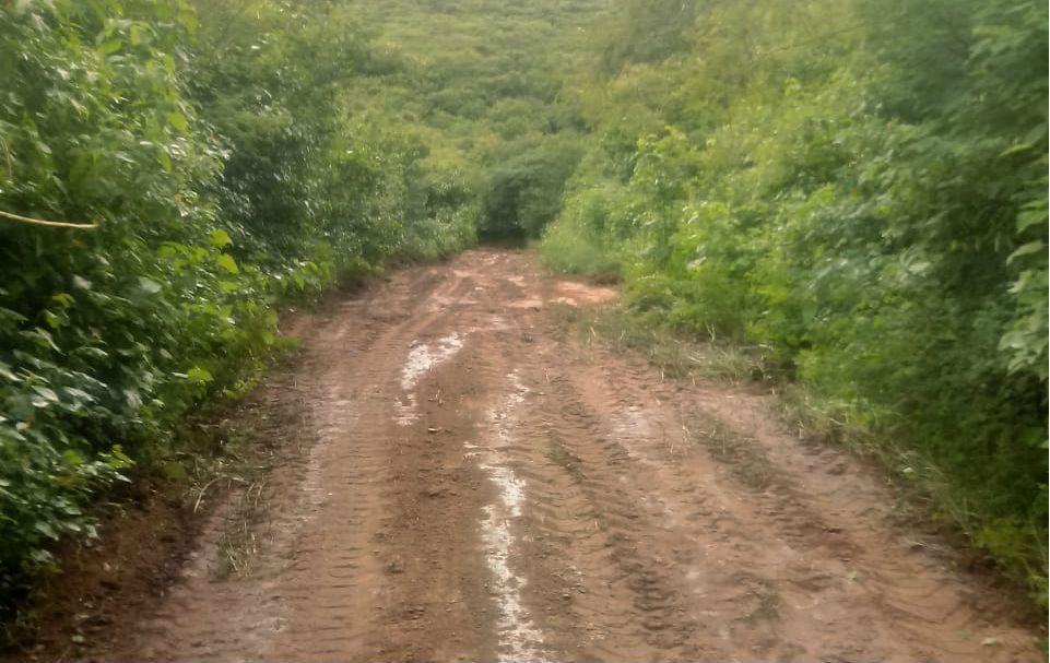 Moradores denunciam insegurança na estrada que dá acesso a Taboquinha