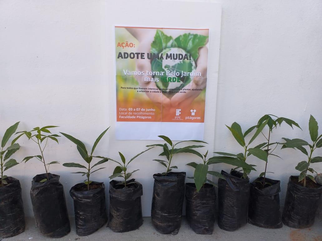 Faculdade Pitágoras lança campanha Adote uma muda em Belo Jardim