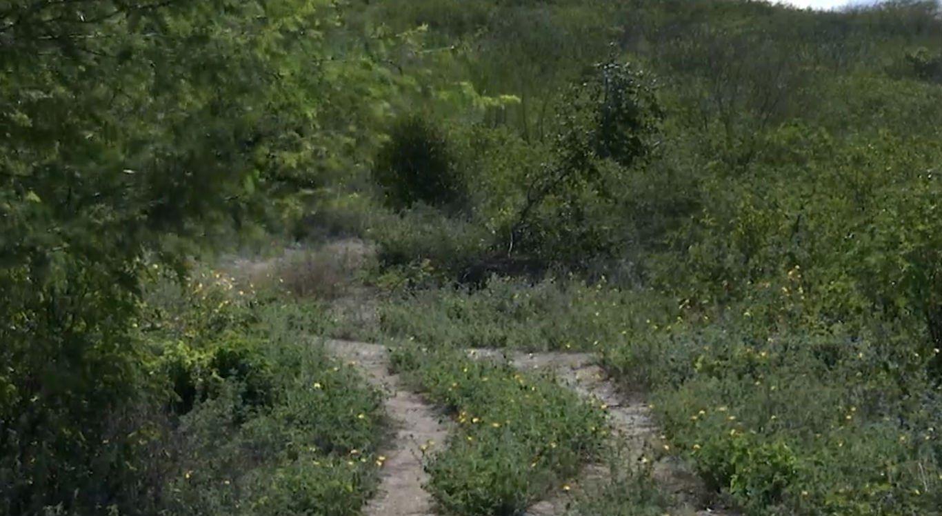 Pais são suspeitos de matar menino de 4 anos em Arcoverde