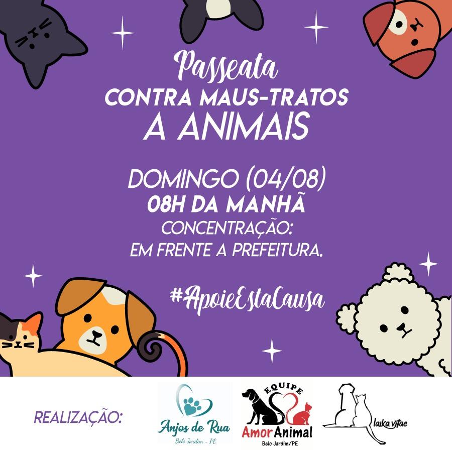 ONGs de Belo Jardim organizam passeata contra maus tratos