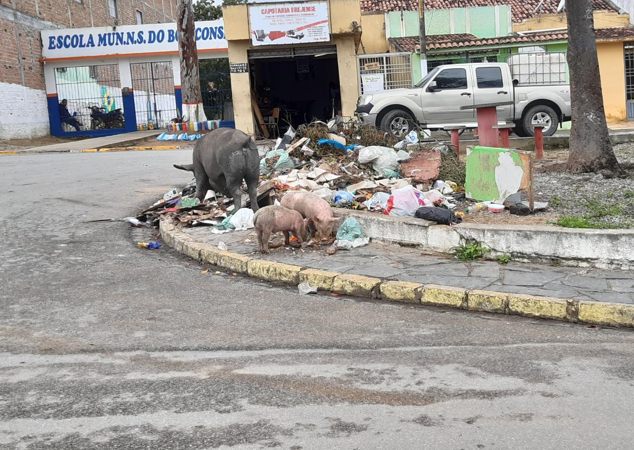 Empresa de limpeza contratada por R$1,8 milhão é alvo de críticas em Belo Jardim