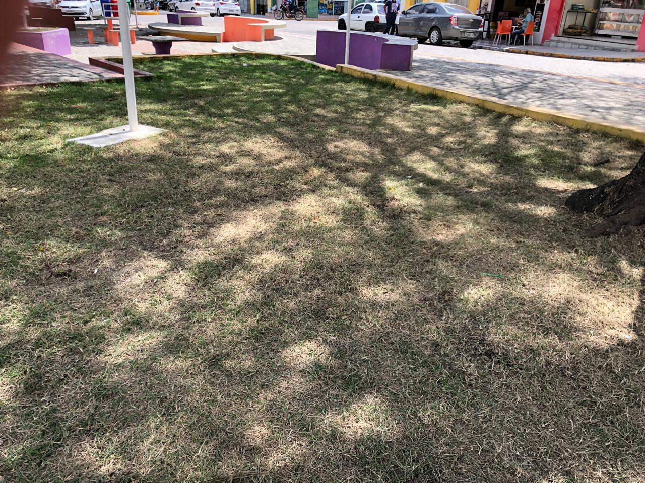 Praça da Bíblia já tem canteiros morrendo e calçadas sem manutenção