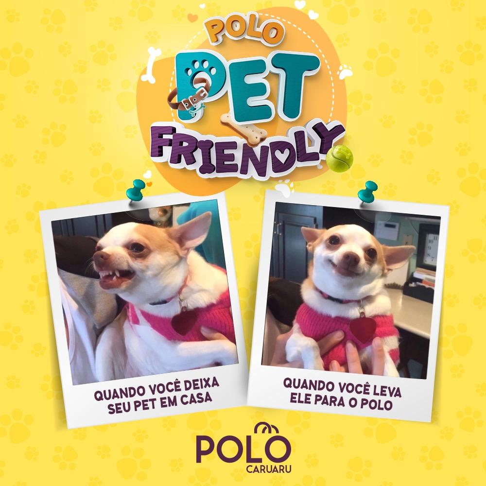 Polo Caruaru adere ao 'Pet Friendly' para receber animais de estimação