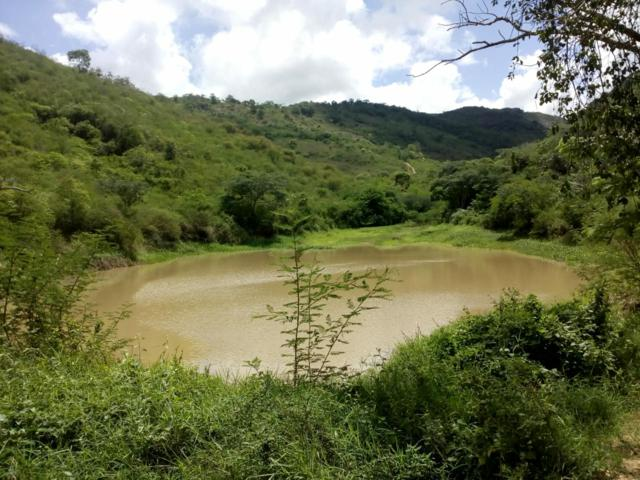 Xucuru comemora acúmulo de água na nascente