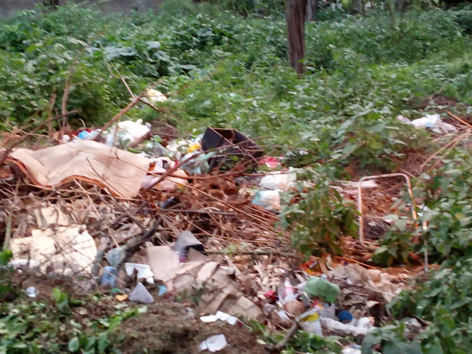 """Parque do Bambu encontra-se totalmente abandonado"", denuncia Gilvandro"