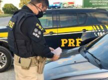 PRF apreende 22 veículos roubados e adulterados durante operação em Pernambuco