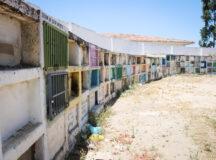 Belo Jardim: Descaso e desrespeito com cemitérios de Belo Jardim próximo ao Dia de Finados