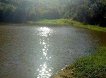 Moradores de Xucuru voltam a ter água nas torneiras