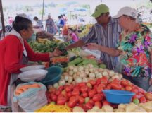 Prefeitura de Belo Jardim adota novas regras para funcionamento das feiras livres