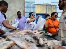 Por conta da pandemia, Secretaria de Assistência Social suspende entrega do peixe em Belo Jardim