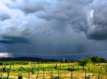 Meteorologista da Apac diz que próximos dias serão de chuvas no Agreste e Sertão