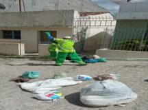 Morador espalha bolsas de lixo na Rua Jacques Cavalcante, em Belo Jardim