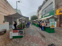 Feira de Agricultura Familiar e Cultural de Belo Jardim funciona em novo local
