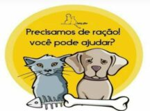 Laika Vitae pede doação de ração para alimentar cães e gatos resgatados em Belo Jardim
