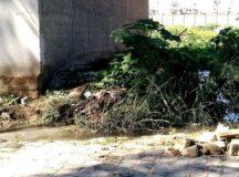 Esgoto a céu aberto na Gameleira coloca em risco saúde dos moradores