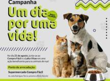 Um dia por uma vida: Laika Vitae faz campanha para arrecadar ração para pets em Belo Jardim