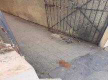 Fezes e urina tomam conta da Travessa da Matriz no Centro de Belo Jardim