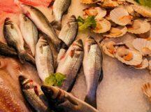 Síndrome de Haff, a doença da urina preta, pode estar relacionada a consumo de frutos do mar