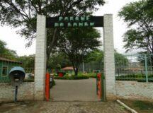 Parceria entre Governo do Estado e gestão Gilvandro vai revitalizar Parque do Bambu